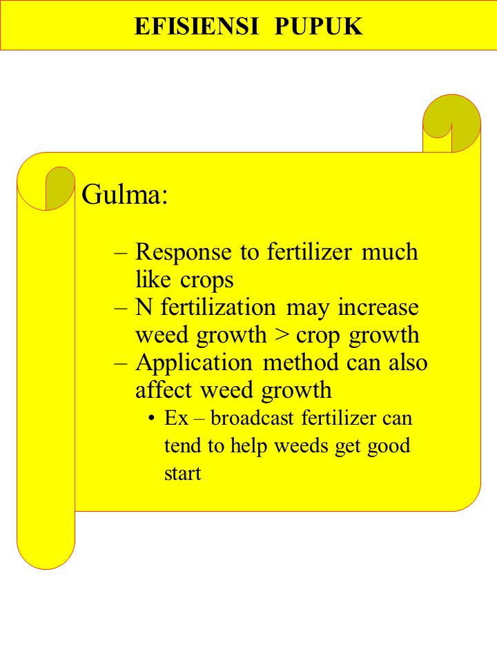Gulma: EFISIENSI PUPUK Response to fertilizer much like crops