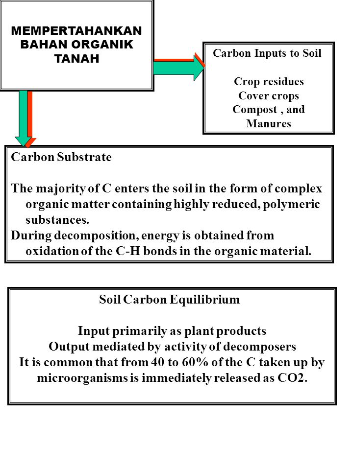 Soil Carbon Equilibrium Input primarily as plant products