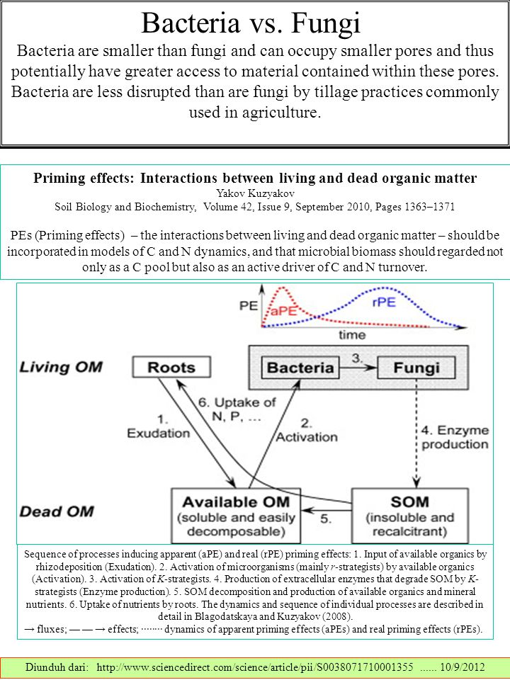 Priming effects: Interactions between living and dead organic matter