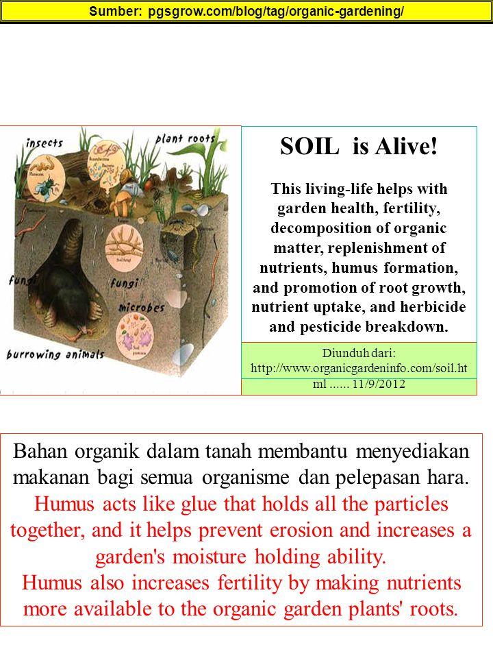Sumber: pgsgrow.com/blog/tag/organic-gardening/