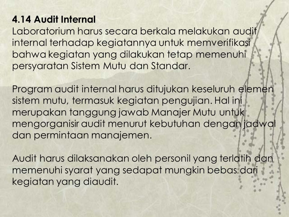 4.14 Audit Internal