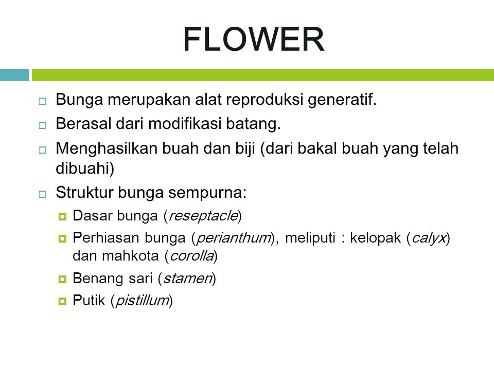 FLOWER Bunga merupakan alat reproduksi generatif.