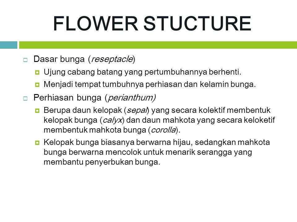 FLOWER STUCTURE Dasar bunga (reseptacle) Perhiasan bunga (perianthum)