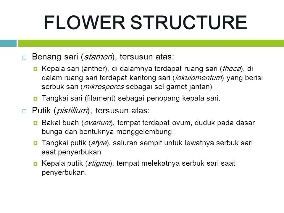 FLOWER STRUCTURE Benang sari (stamen), tersusun atas: