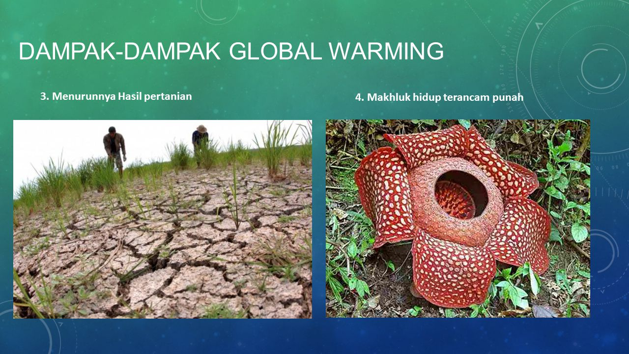 Dampak-dampak GLOBAL WARMING