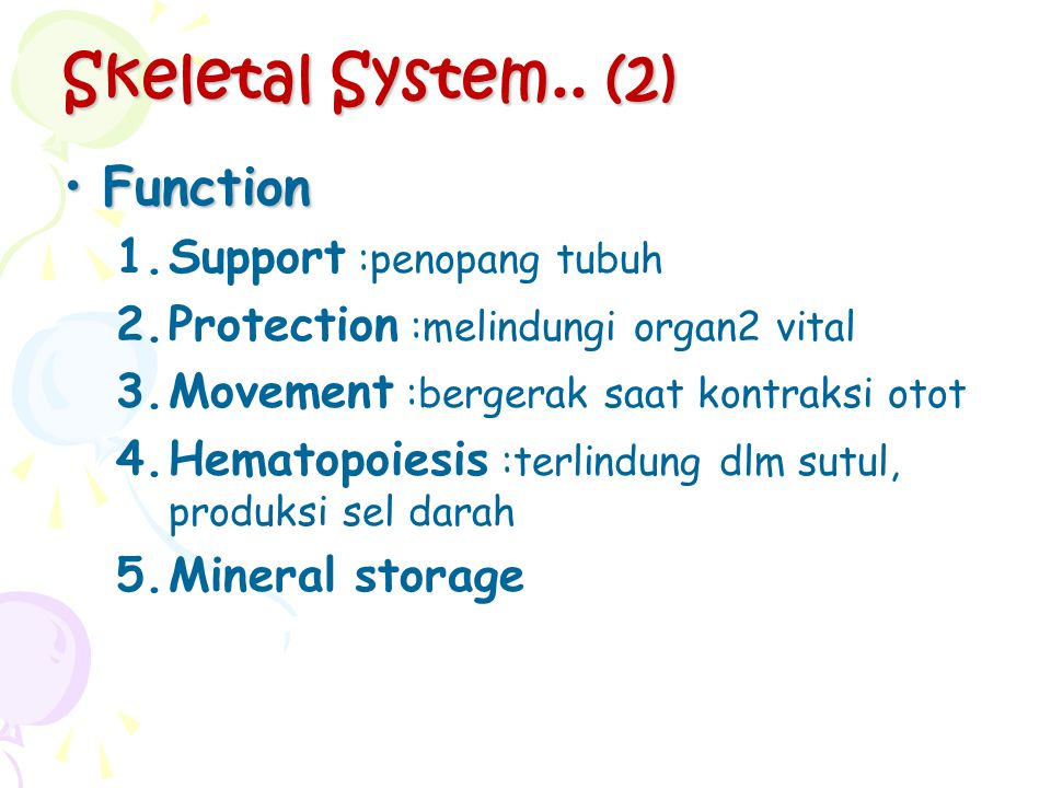 Skeletal System.. (2) Function Support :penopang tubuh