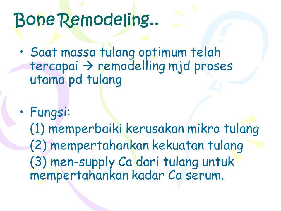 Bone Remodeling.. Saat massa tulang optimum telah tercapai  remodelling mjd proses utama pd tulang.