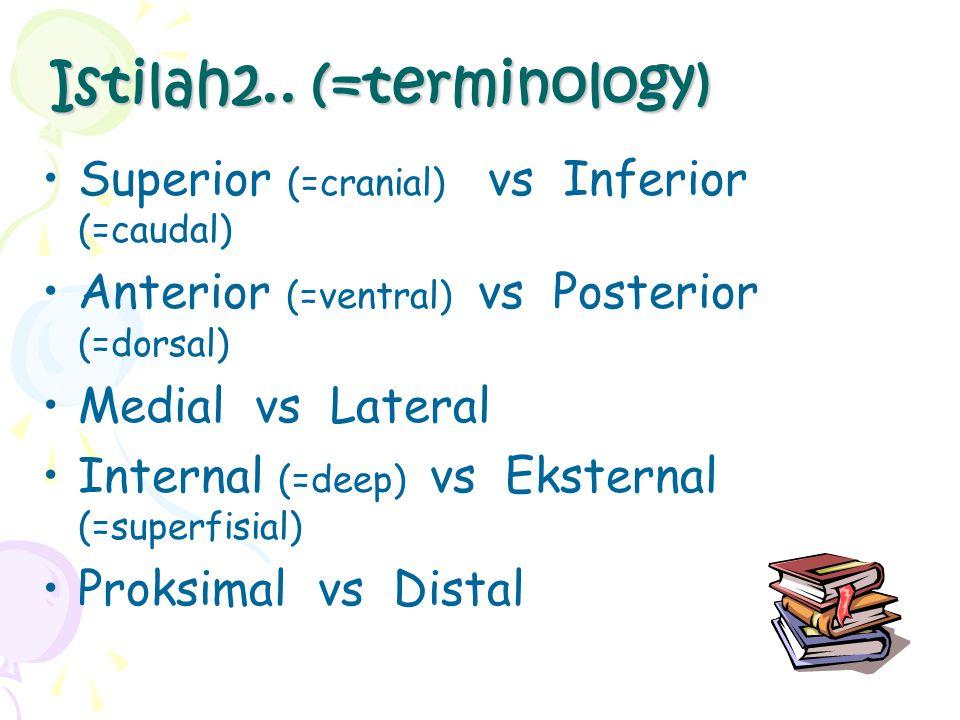 Istilah2.. (=terminology)