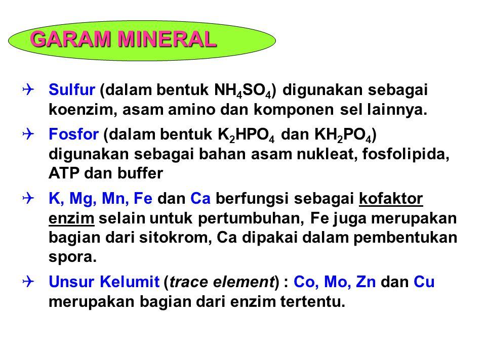 GARAM MINERAL Sulfur (dalam bentuk NH4SO4) digunakan sebagai koenzim, asam amino dan komponen sel lainnya.