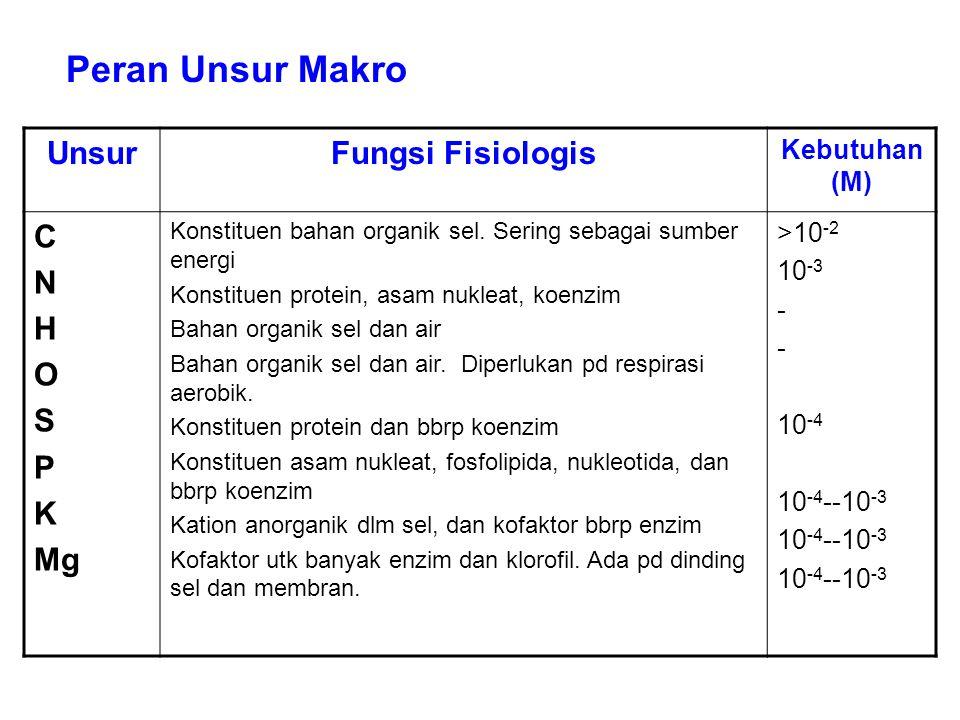 Peran Unsur Makro Unsur Fungsi Fisiologis C N H O S P K Mg