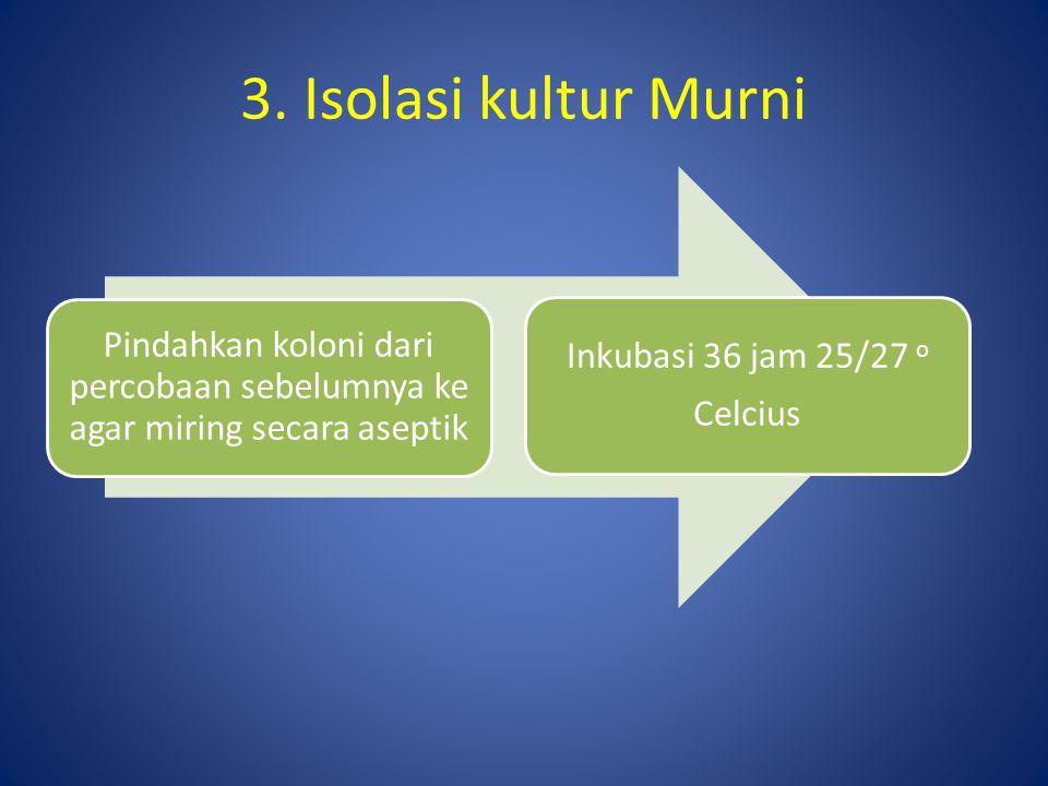 3. Isolasi kultur Murni Pindahkan koloni dari percobaan sebelumnya ke agar miring secara aseptik. Inkubasi 36 jam 25/27 o.