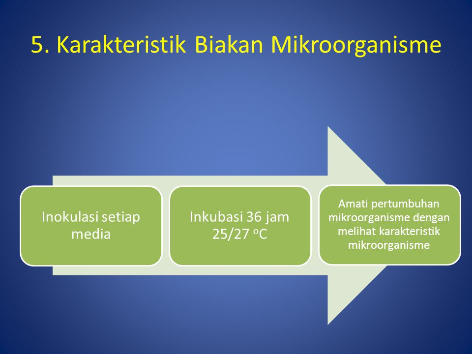5. Karakteristik Biakan Mikroorganisme