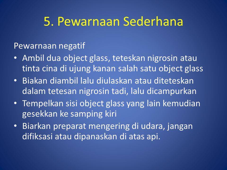 5. Pewarnaan Sederhana Pewarnaan negatif