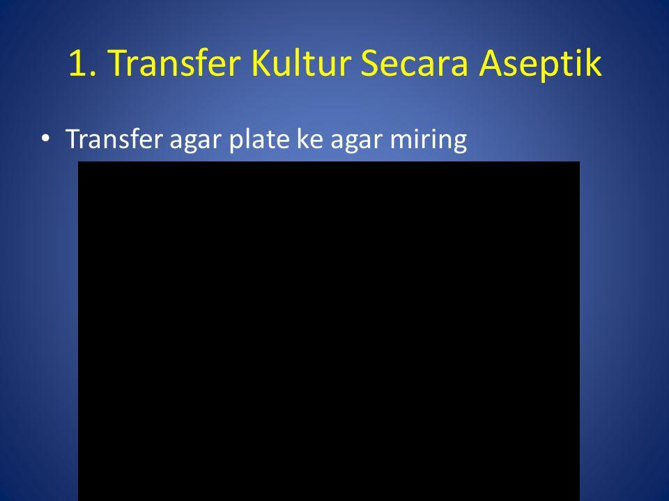 1. Transfer Kultur Secara Aseptik