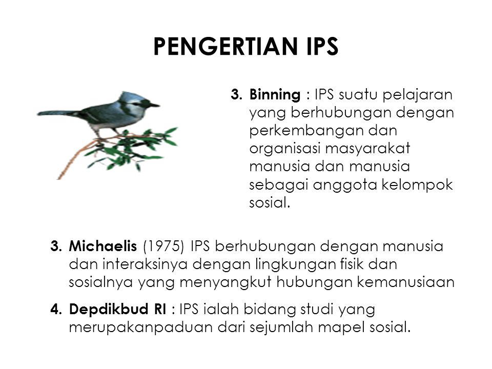 PENGERTIAN IPS