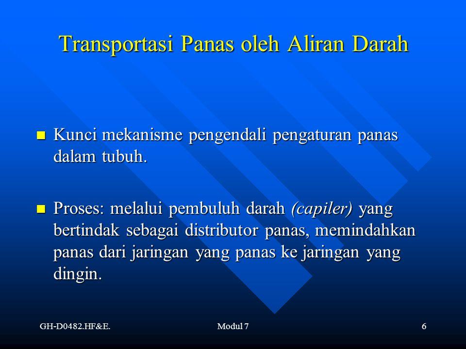 Transportasi Panas oleh Aliran Darah