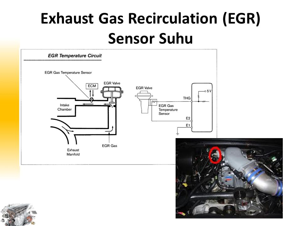 Exhaust Gas Recirculation (EGR) Sensor Suhu