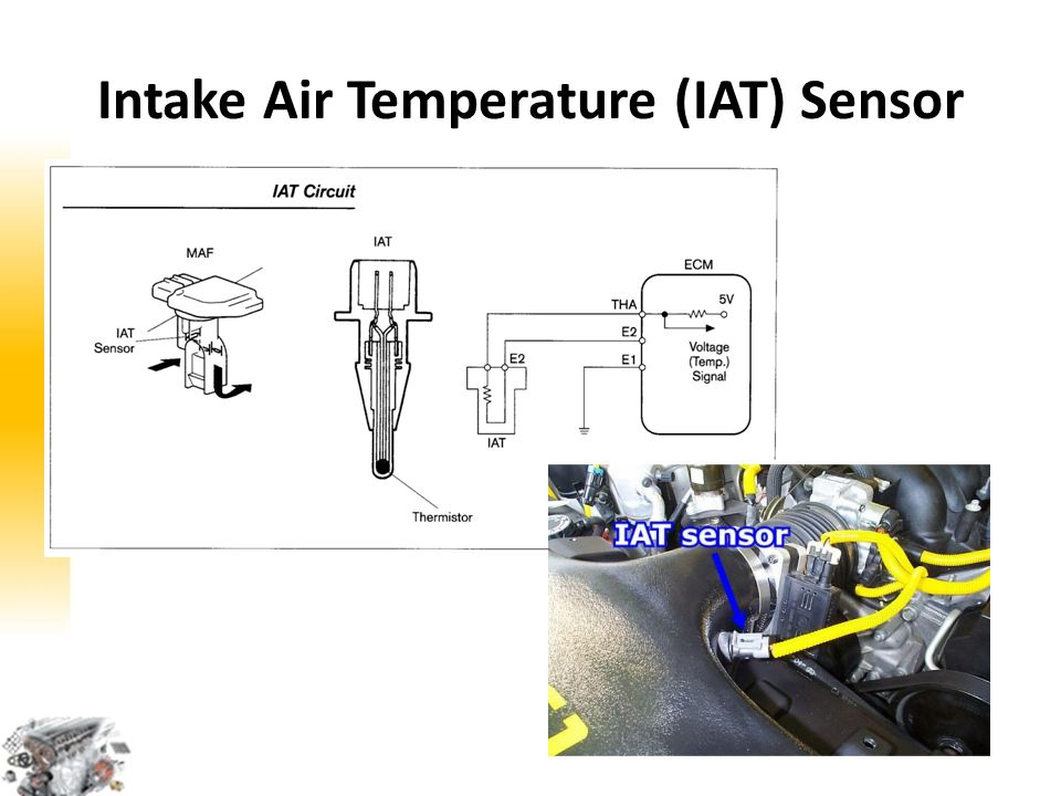 Intake Air Temperature (IAT) Sensor