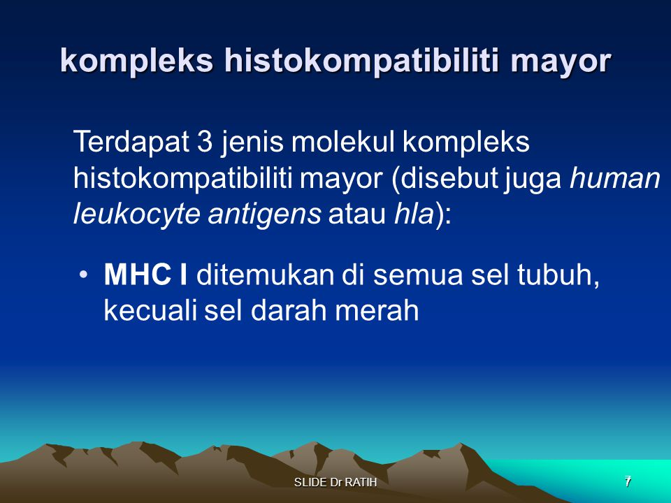 kompleks histokompatibiliti mayor