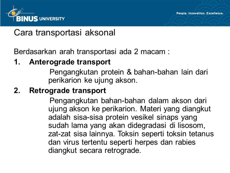 Cara transportasi aksonal