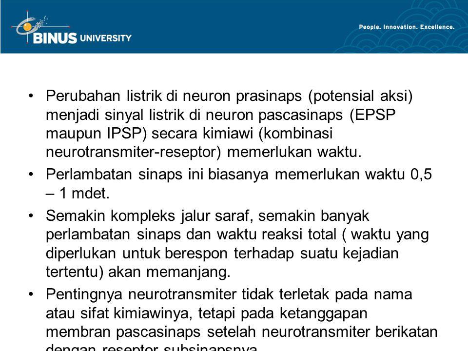 Perubahan listrik di neuron prasinaps (potensial aksi) menjadi sinyal listrik di neuron pascasinaps (EPSP maupun IPSP) secara kimiawi (kombinasi neurotransmiter-reseptor) memerlukan waktu.