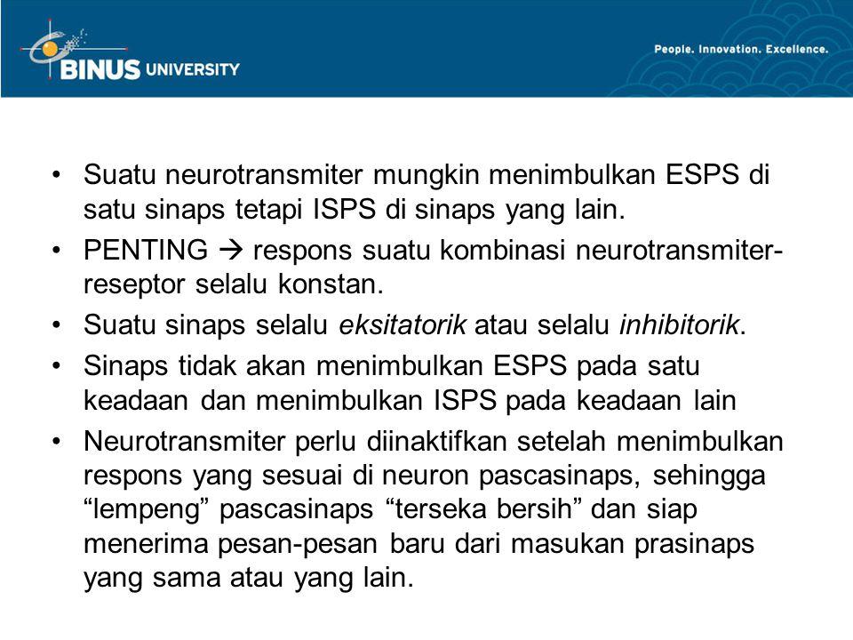 Suatu neurotransmiter mungkin menimbulkan ESPS di satu sinaps tetapi ISPS di sinaps yang lain.