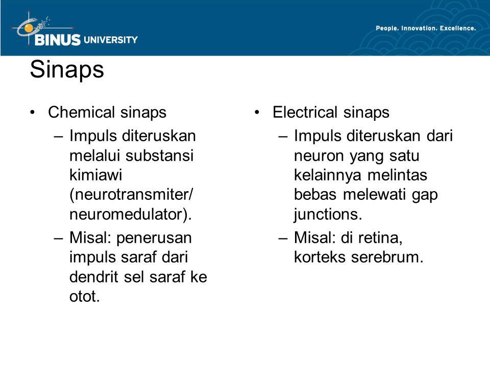 Sinaps Chemical sinaps