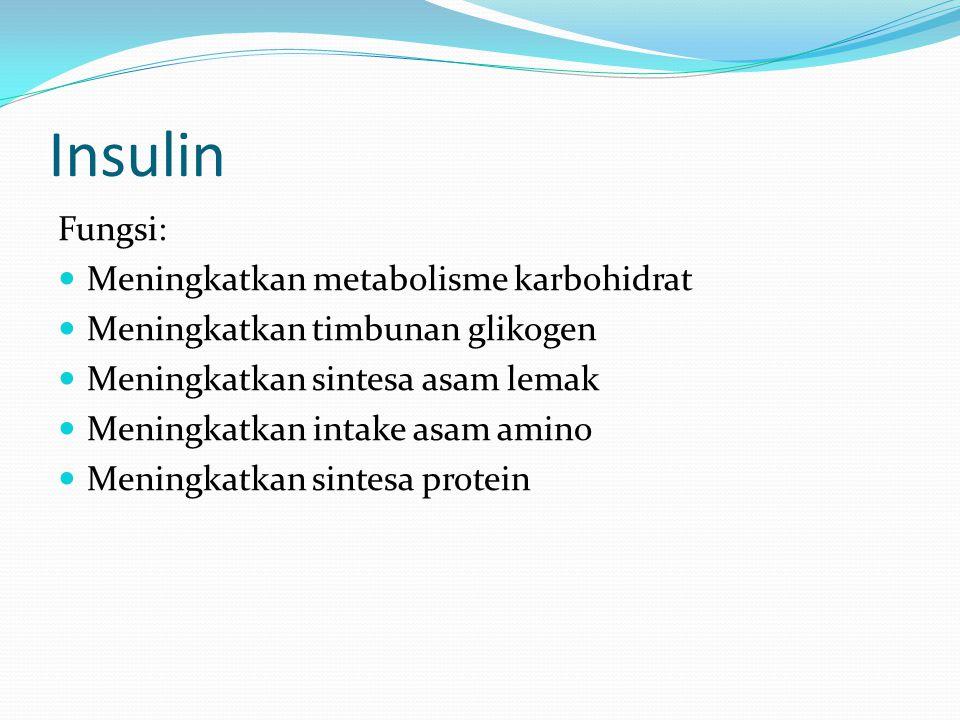 Insulin Fungsi: Meningkatkan metabolisme karbohidrat