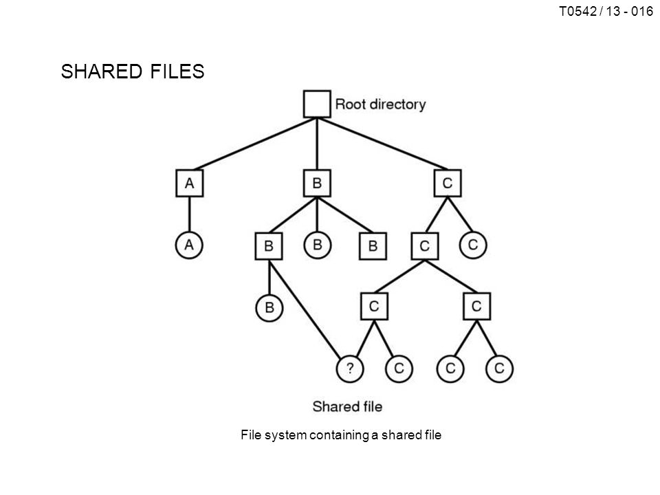 SHARED FILES File system containing a shared file