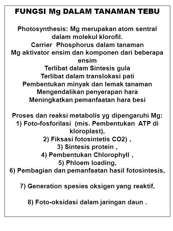 FUNGSI Mg DALAM TANAMAN TEBU