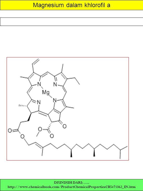 Magnesium dalam khlorofil a