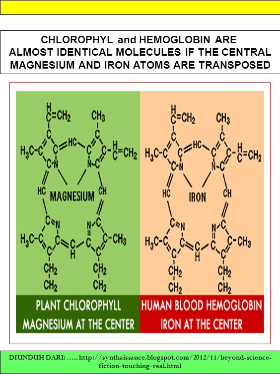 MAGNESIUM AND IRON ATOMS ARE TRANSPOSED
