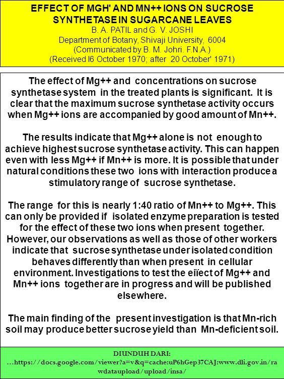 EFFECT OF MGH AND MN++ IONS ON SUCROSE SYNTHETASE IN SUGARCANE LEAVES