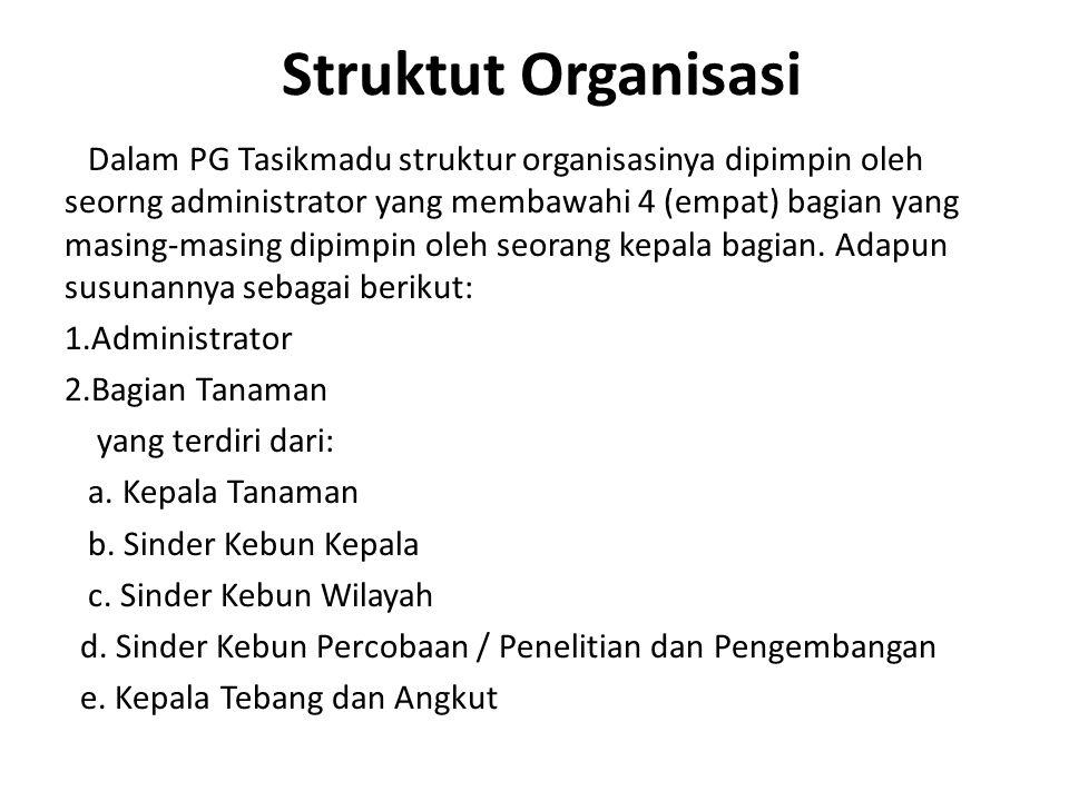 Struktut Organisasi