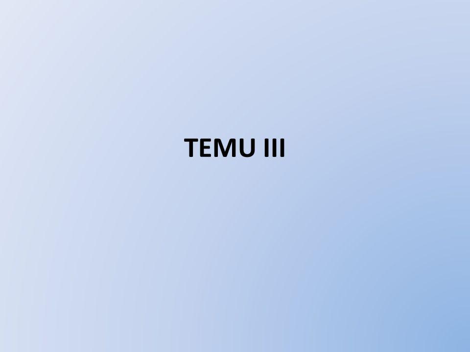 TEMU III