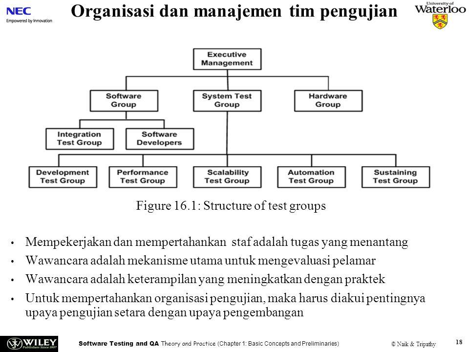 Organisasi dan manajemen tim pengujian