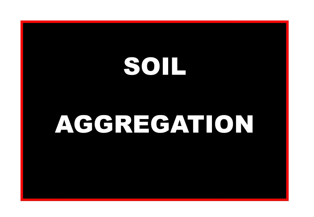 SOIL AGGREGATION