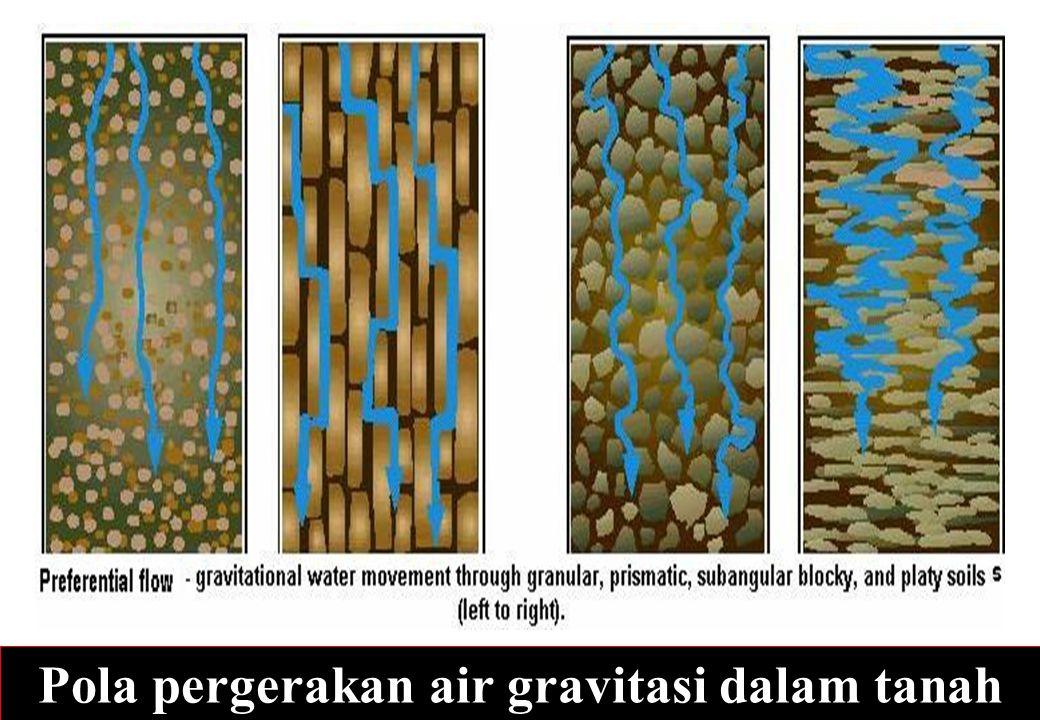Pola pergerakan air gravitasi dalam tanah