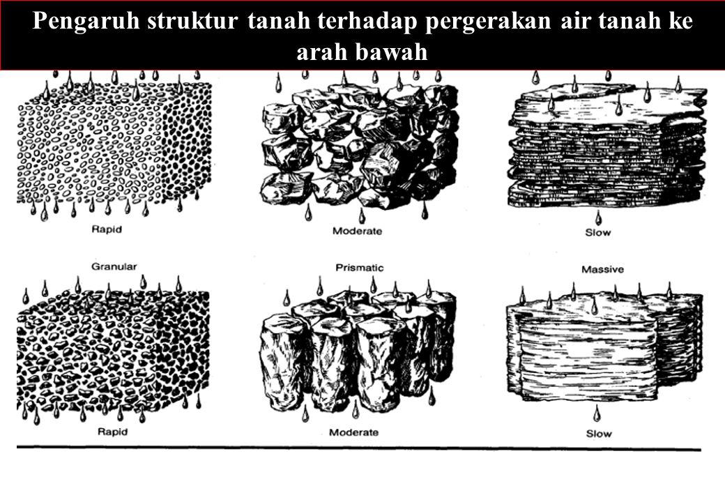Pengaruh struktur tanah terhadap pergerakan air tanah ke arah bawah