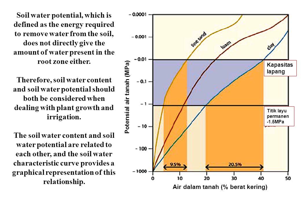 Potensial air tanah (MPa) Air dalam tanah (% berat kering)