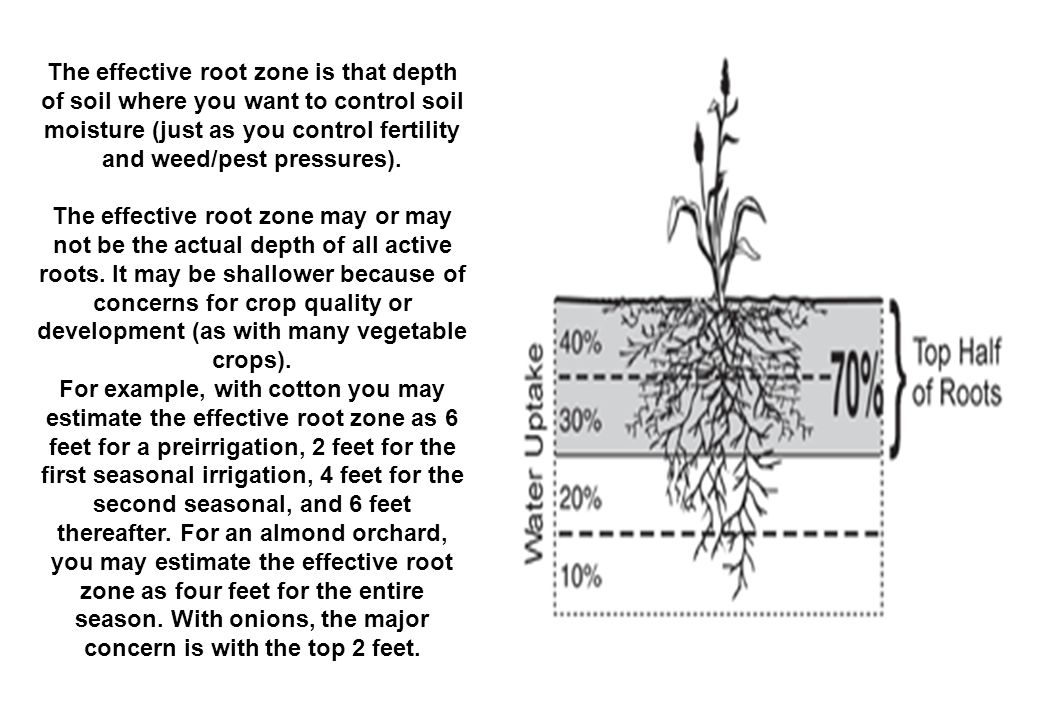 The effective root zone is that depth of soil where you want to control soil moisture (just as you control fertility and weed/pest pressures).