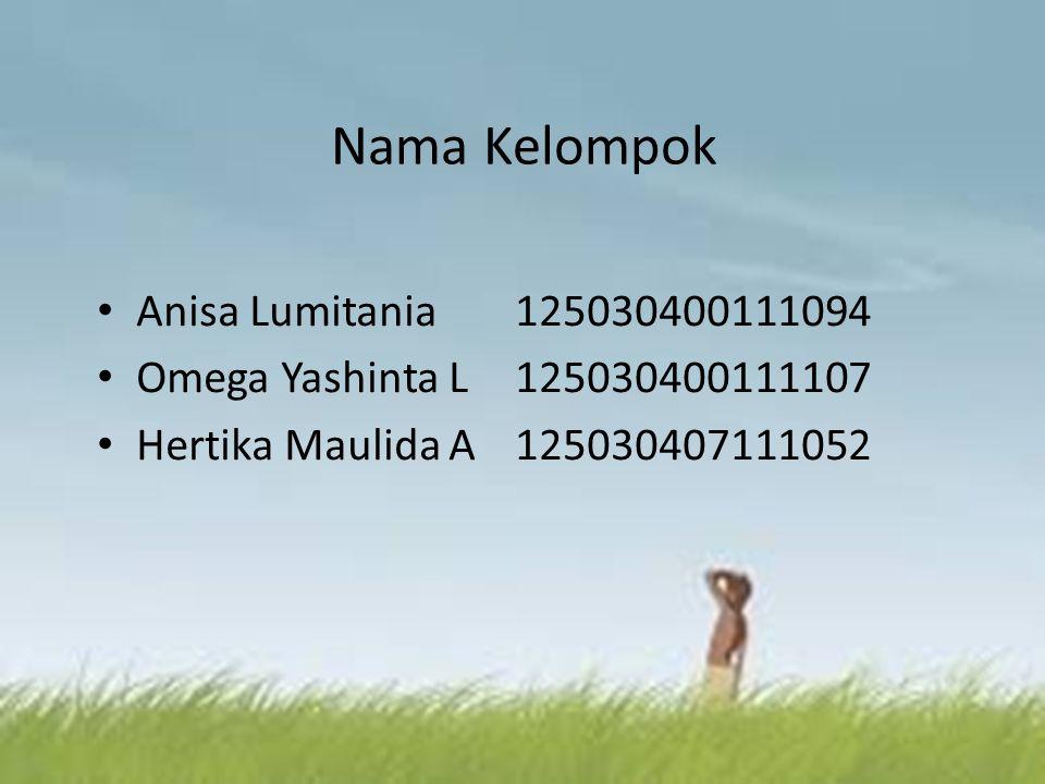 Nama Kelompok Anisa Lumitania 125030400111094
