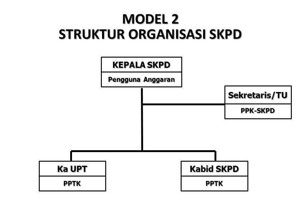 MODEL 2 STRUKTUR ORGANISASI SKPD