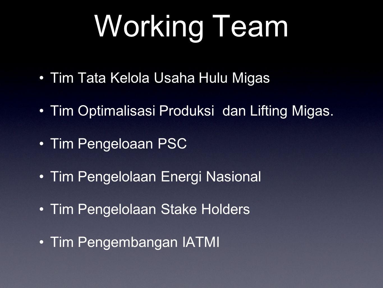 Working Team Tim Tata Kelola Usaha Hulu Migas