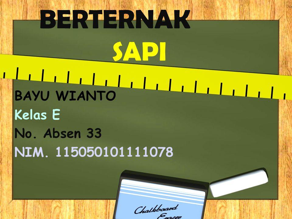 BAYU WIANTO Kelas E No. Absen 33 NIM. 115050101111078