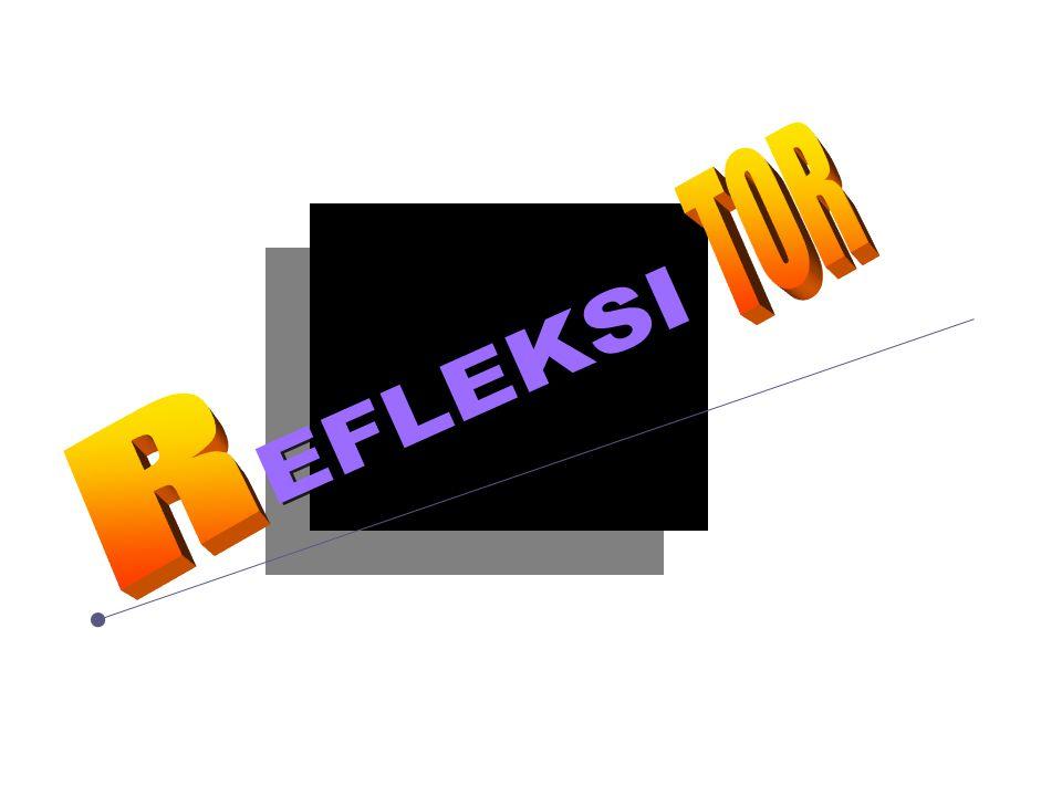 TOR EFLEKSI R