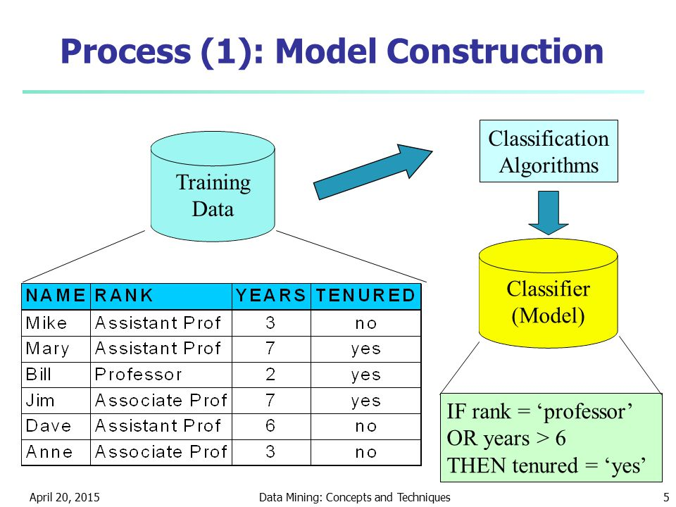 Process (1): Model Construction