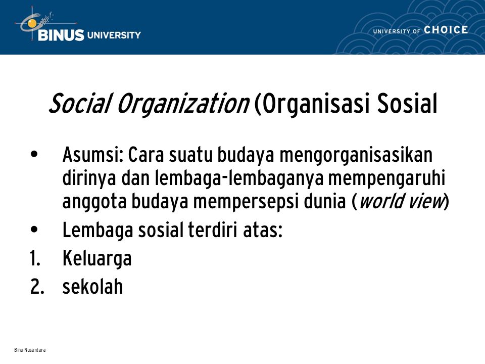 Social Organization (Organisasi Sosial