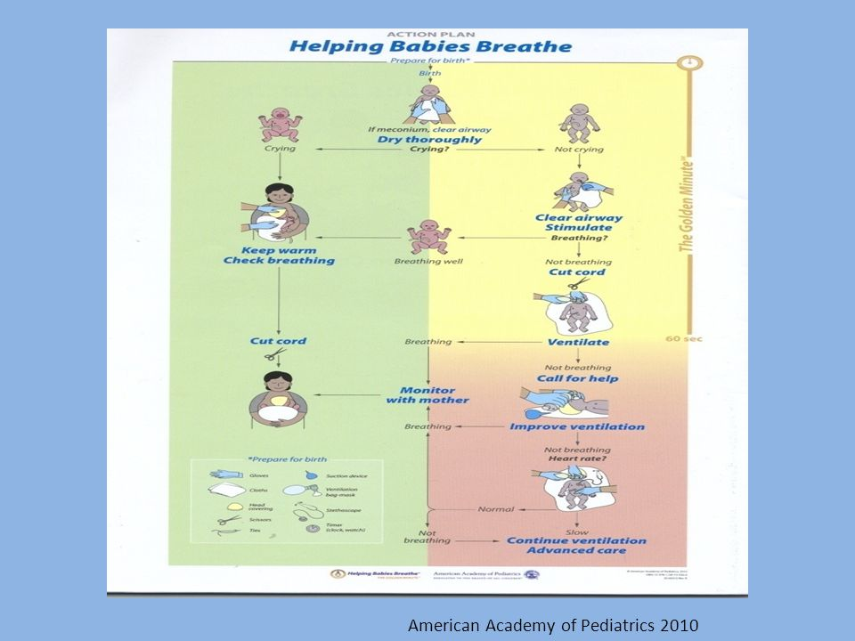 American Academy of Pediatrics 2010