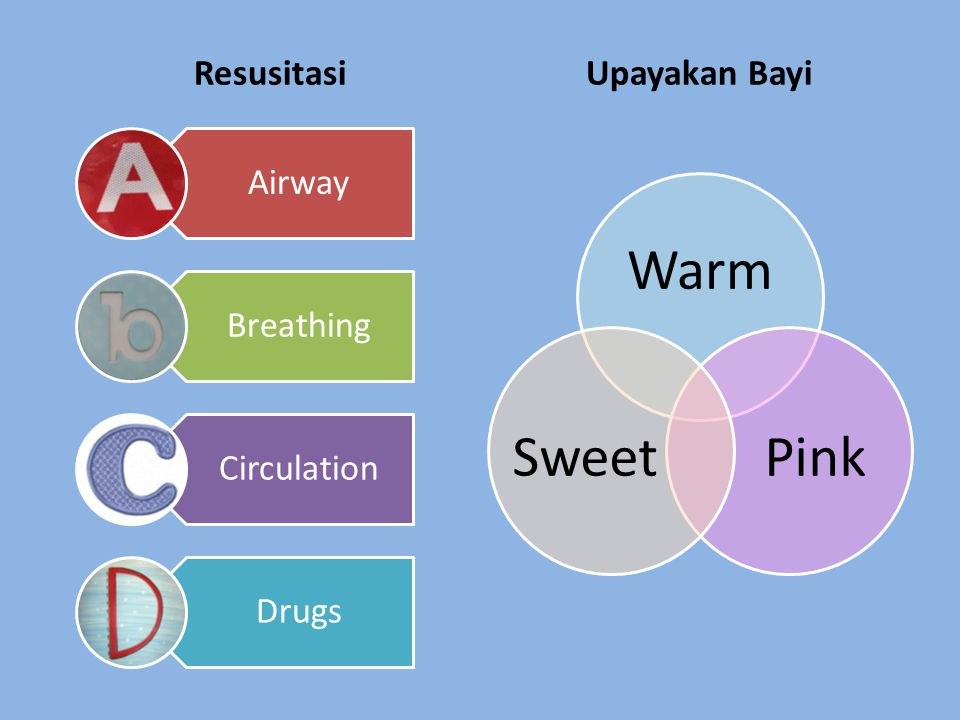 Resusitasi Upayakan Bayi Warm Pink Sweet Airway Breathing Circulation